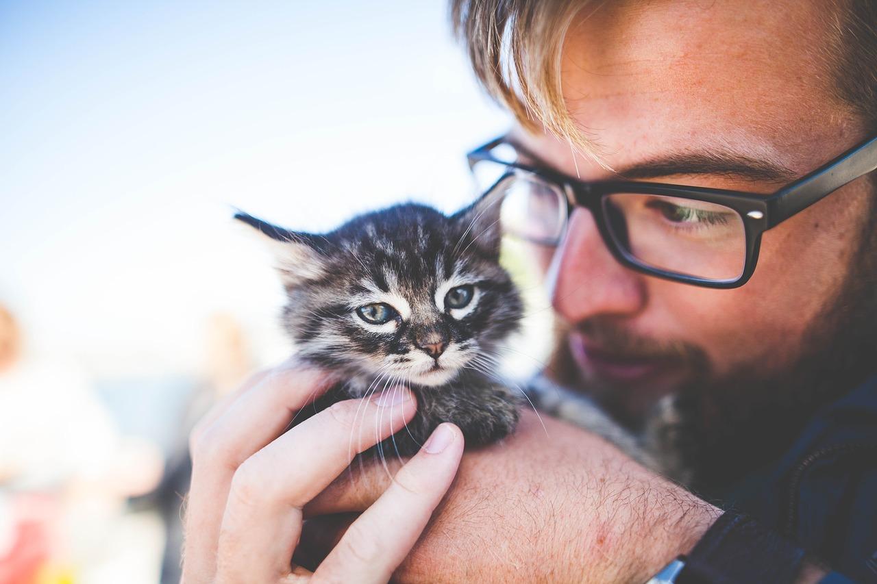 man and kitten